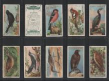 Tobacco cards cigarette cards 1923 British Birds set
